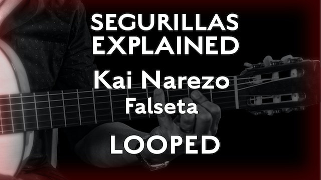 Seguirillas Explained - Kai Narezo Falseta - SLOW/LOOPED