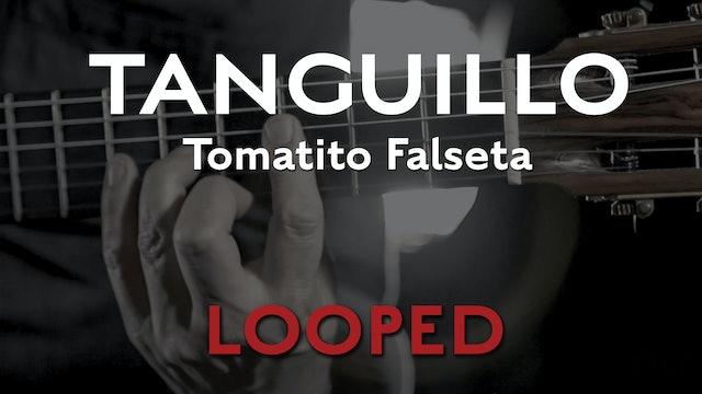 Friday Falseta - Tomatito Tanguillo Falseta - LOOP