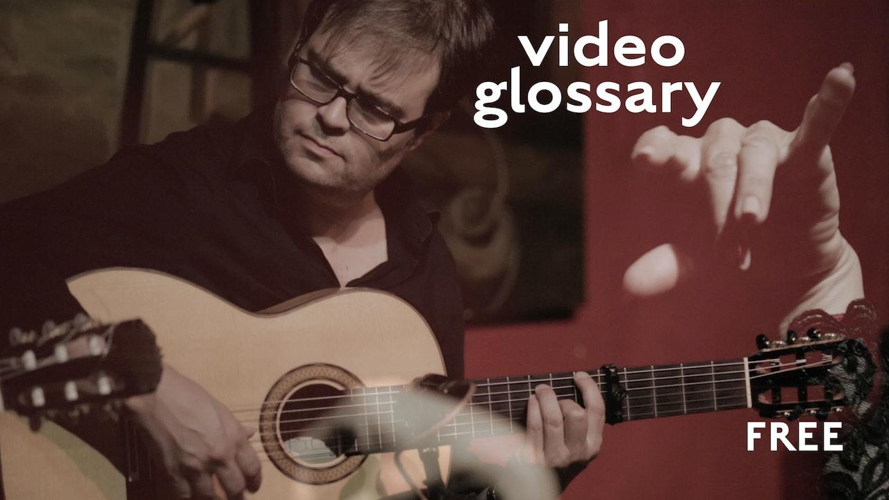 Flamenco Video Glossary Pocket Guide - FREE