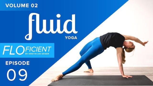 FLUID (V02:E09)