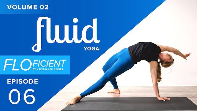 FLUID (V02:E06)
