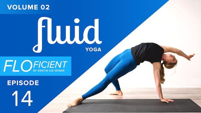 FLUID (V02:E14)