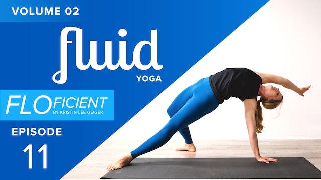 FLUID (V02:E11)