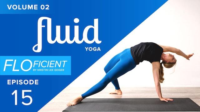 FLUID (V02:E15)