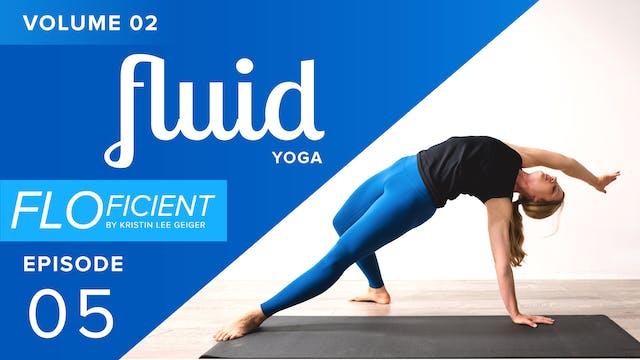 FLUID (V02:E05)