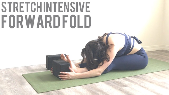 Forward Fold Stretch Intensive