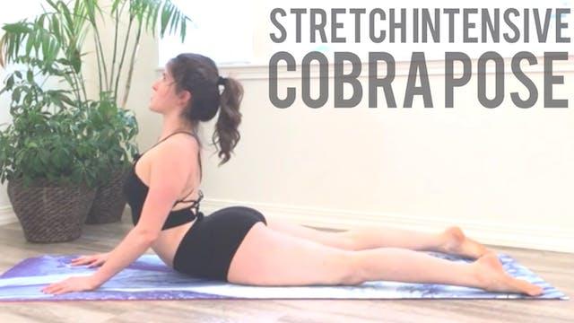 Cobra Stretch Intensive
