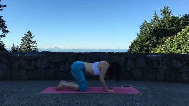Full Body Yoga : Warm Up Flow
