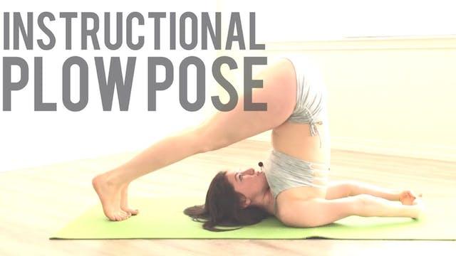 Plow Pose Instructional