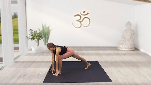 Yoga Flow #2 with Sjana