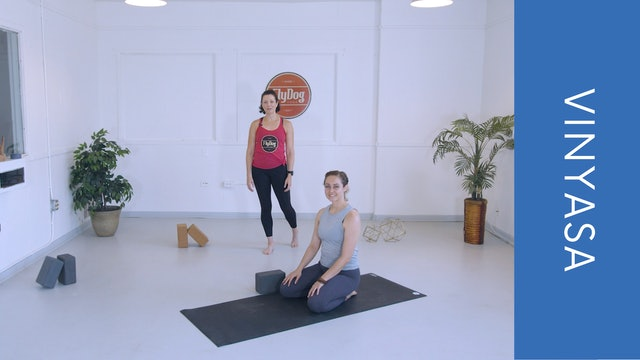 Vinyasa with Courtney C (33min)