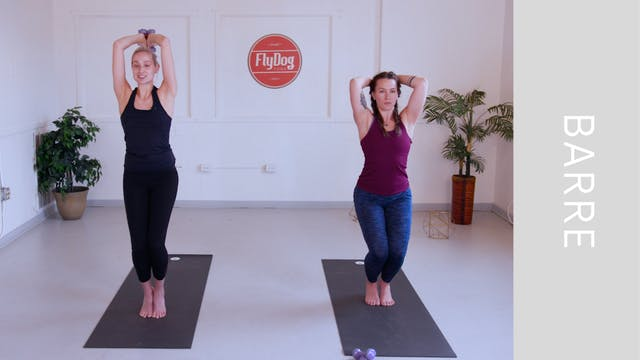 Barre with Emily (31min)