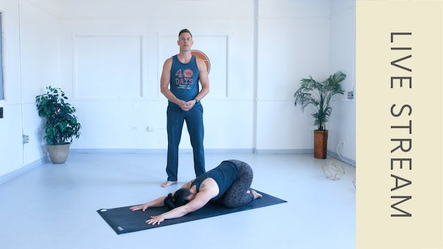 Power Vinyasa with Adam (60min)