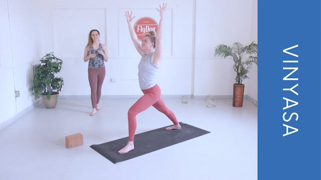 Vinyasa with Courtney N (33min)