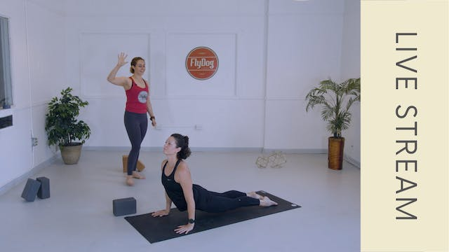 Vinyasa with Courtney N (60min)