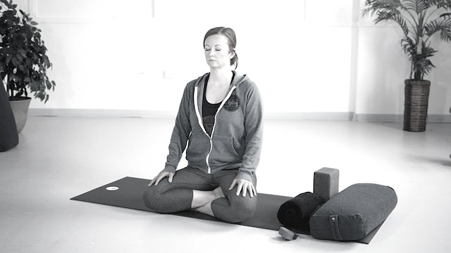 WED 6/23 | 4:00PM EST | Yin with Shannon