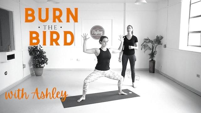 FRI 11/27 | 10:00AM EST | Burn the Bird Vinyasa with Ashley