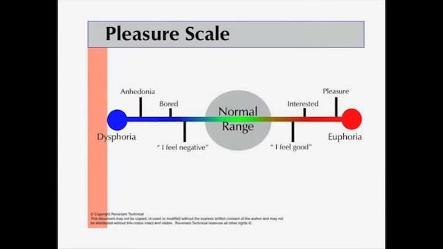 Pleasure Scale, Craving Identification