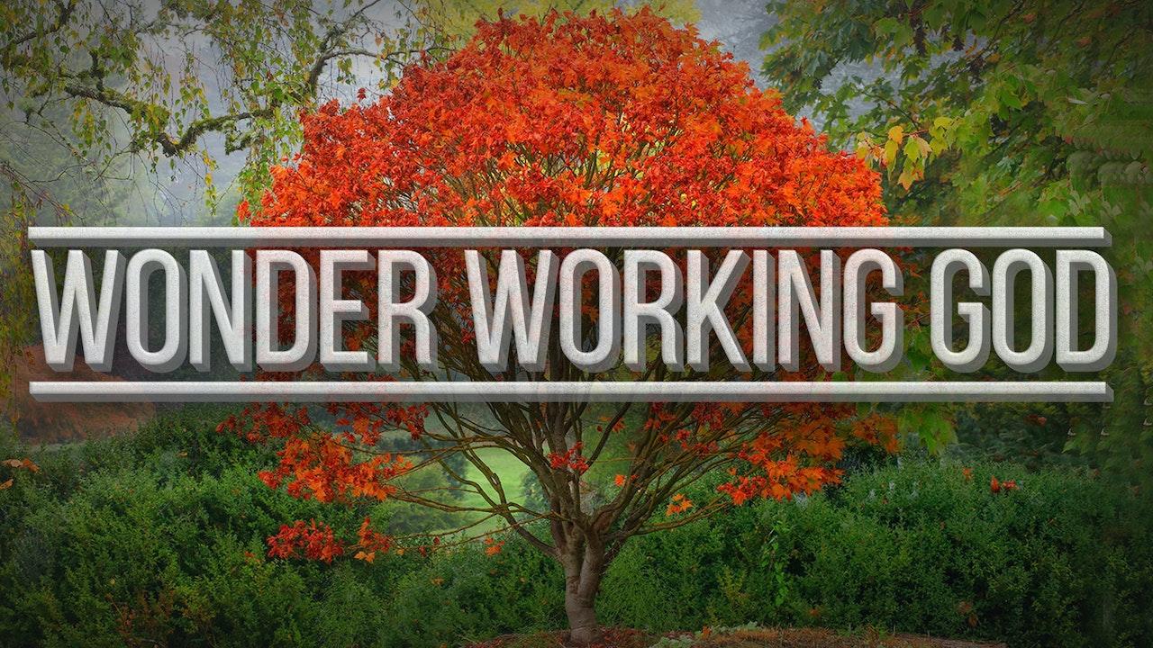 Wonder Working God