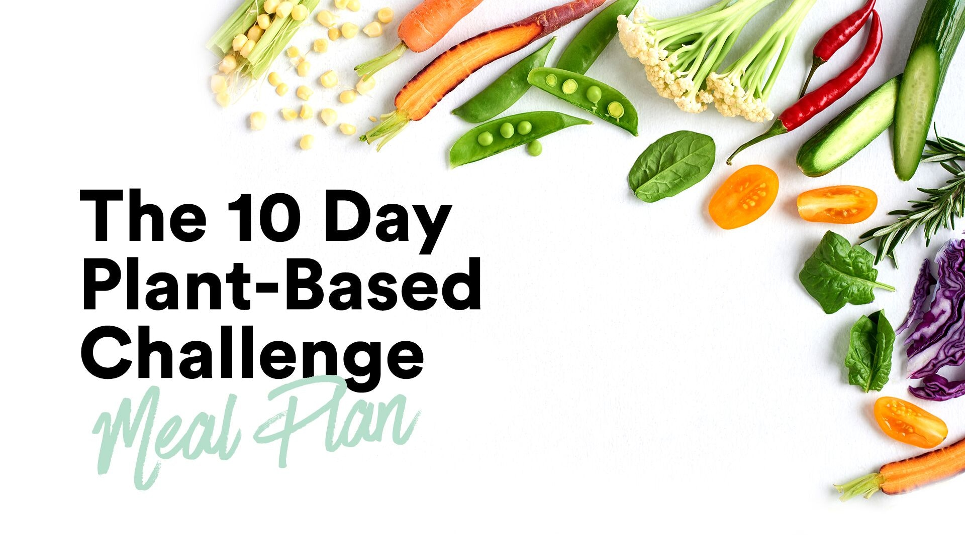 Plant based diet meal plan pdf
