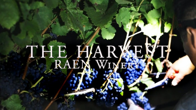Harvest Episode 3: Raen Wine