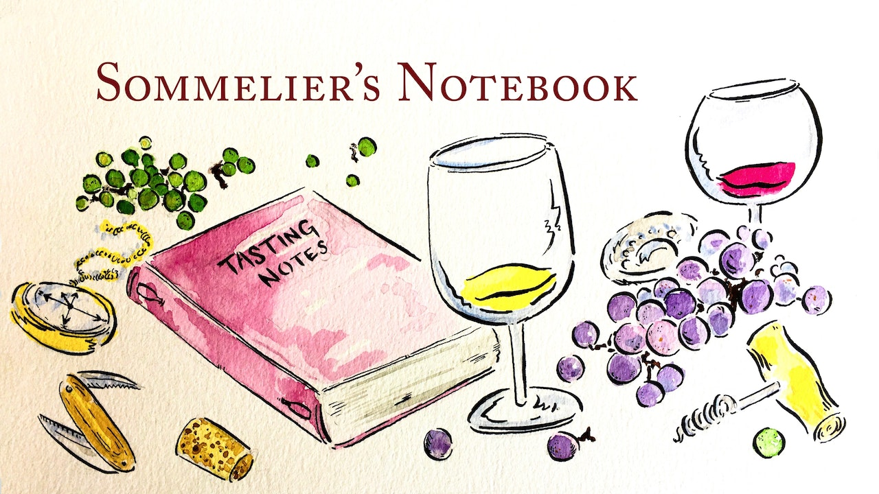 Learn about Grapes, Wine, and more