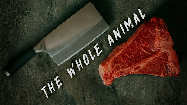 COMING SOON: The Whole Animal