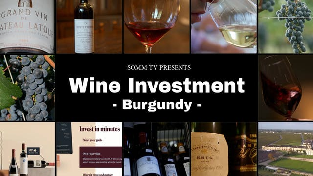 Wine Investment, Episode 5: Burgundy