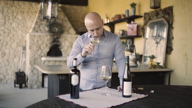 Tasting Notes: Grüner Veltliner v. Pinot Grigio