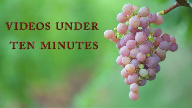 Videos Under Ten Minutes
