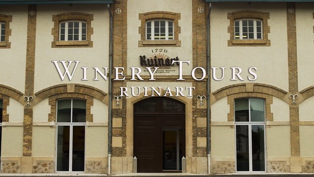 Ruinart Winery Tour