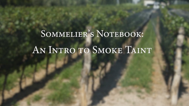 An Intro to Smoke Taint