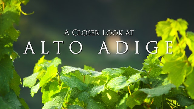 A Closer Look at Alto Adige
