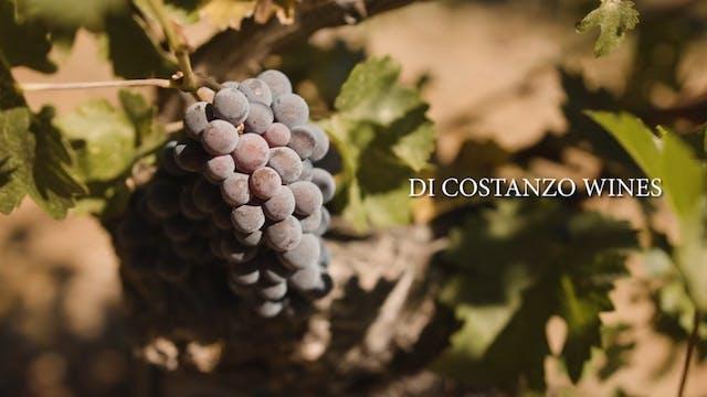 A Di Costanzo Wine Tasting