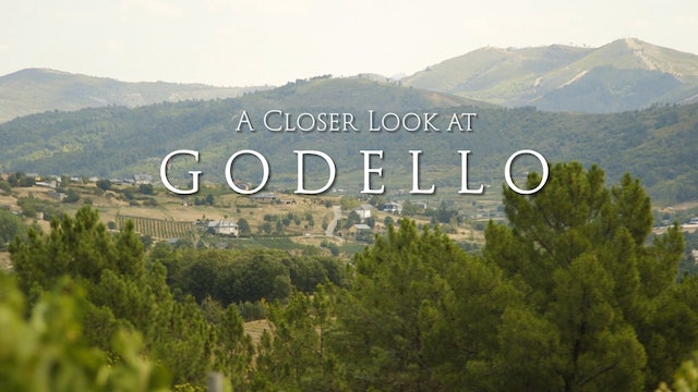 A Closer Look at Godello