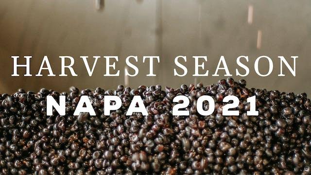 Harvest Season - Napa 2021