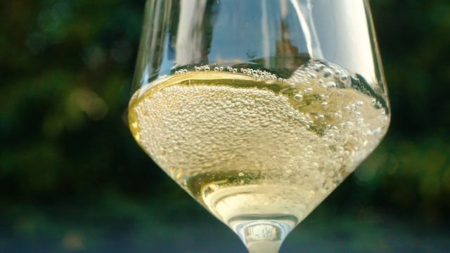 A Closer Look at Champagne: Part 3