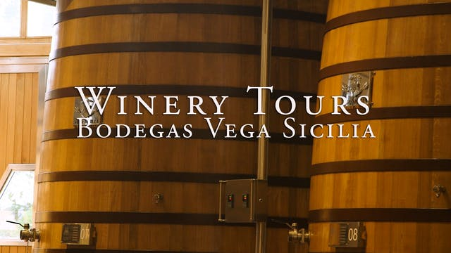 Bodegas Vega Sicilia Winery Tour