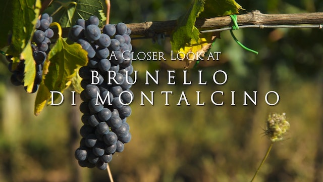 A Closer Look at Brunello