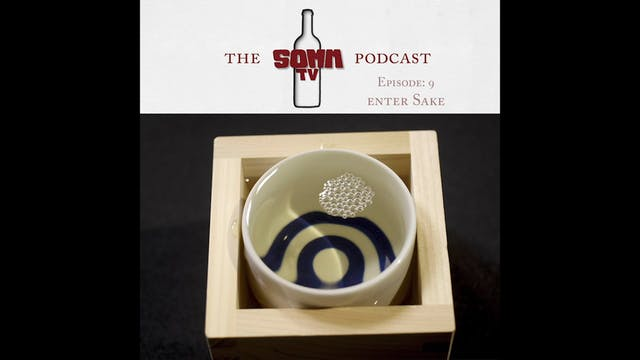 SommTV Podcast Ep 9 Enter Sake