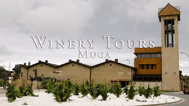 Muga Winery Tour