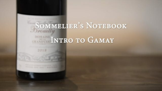 An Intro to Gamay
