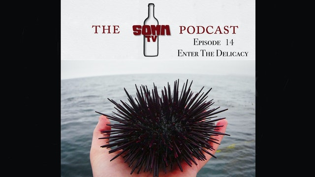 SommTV Podcast: Enter The Delicacy