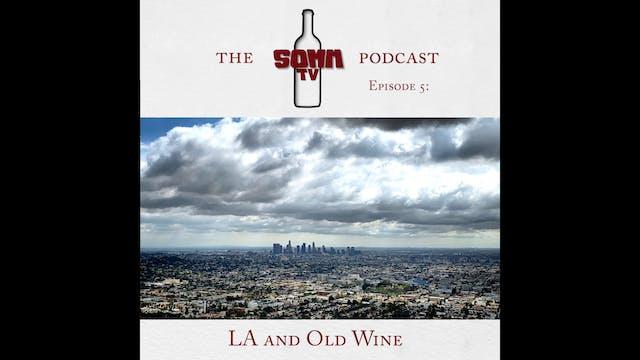 SommTV Podcast Ep5 Dave Gibbs
