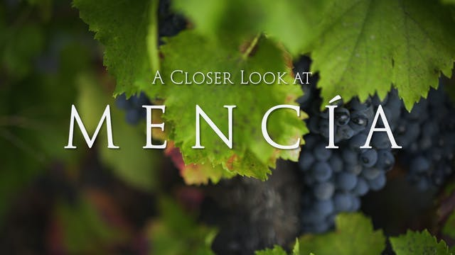 A Closer Look at Mencia