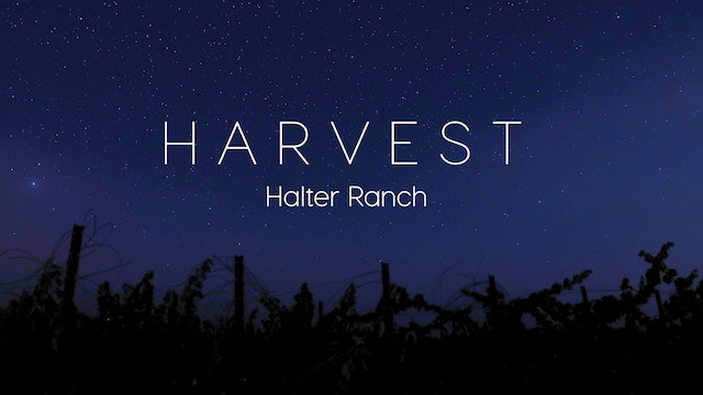 Harvest Episode 6: Halter Ranch