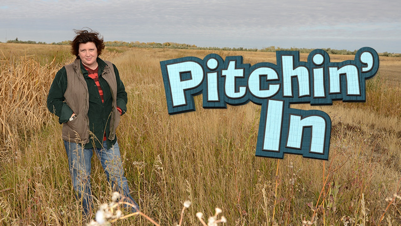 The Pitchin' In Series