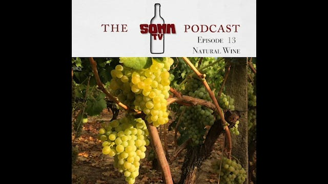 SommTV Podcast Ep13 Natural Wine