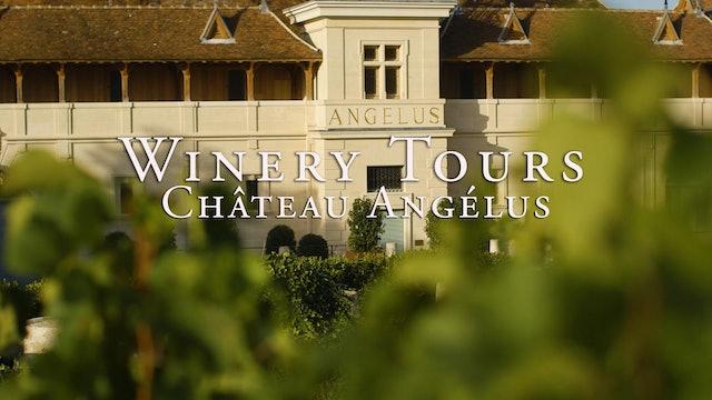 Château Angélus Winery Tour
