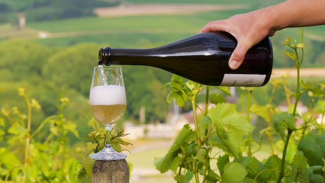 A Closer Look at Champagne: Part 2